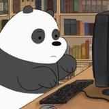 Lady Panda