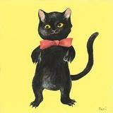西南平克猫
