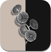 Sensory Spaces - By Mew and B&O PLAY (iPhone / iPad)