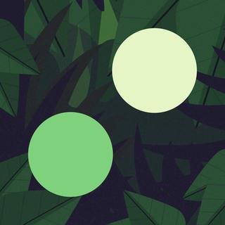 两点之间 Two Dots