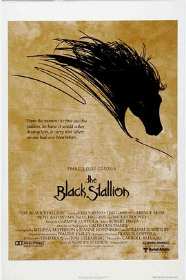 黑神驹 The Black Stallion