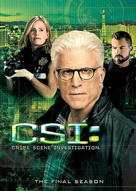 犯罪现场调查 第十五季 CSI: Crime Scene Investigation Season 15