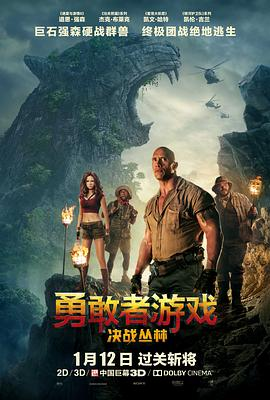 勇敢者游戏:决战丛林 Jumanji: Welcome to the Jungle