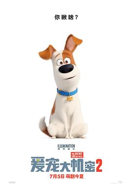 爱宠大机密2 The Secret Life of Pets 2