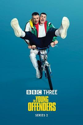 年少轻狂 第二季 The Young Offenders Season 2
