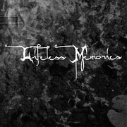 Lifeless Memories