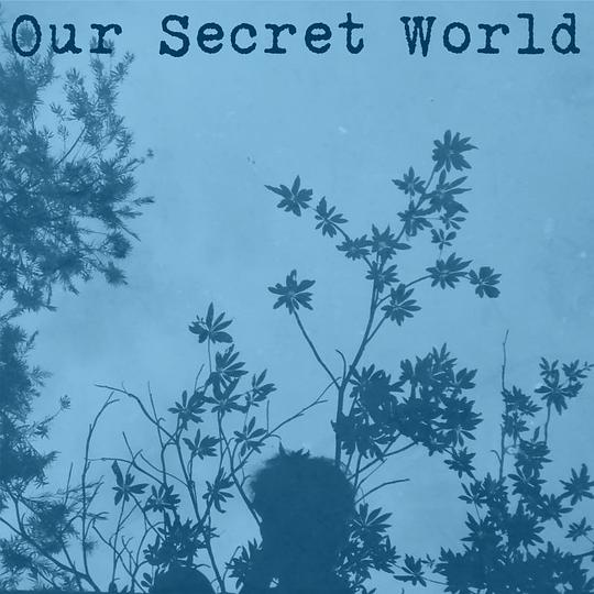 Various Artists - Our Secret World