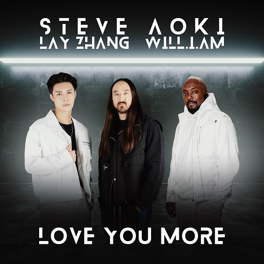 Steve Aoki... - Love You More