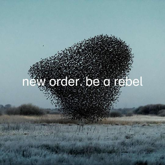 新秩序乐团 New Order - Be a Rebel