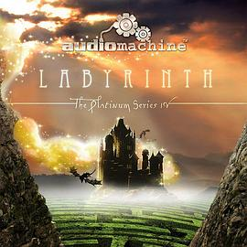 The Platinum Series IV: Labyrinth