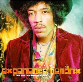 Jimi Hendrix - Experience Hendrix The Best of Jimi Hendrix