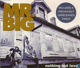 Mr.Big - Nothing but Love